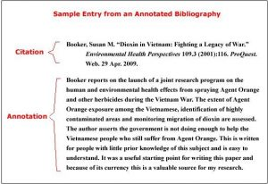 Write the annotation after the citation in annotated bibliography