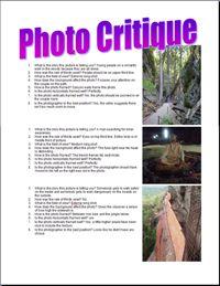 sample of a photo critique